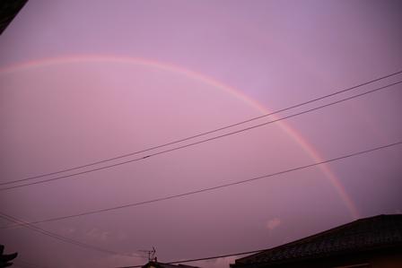 虹_20130511_IMG_0489.jpg